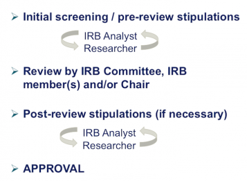 IRB Review Process Infographic